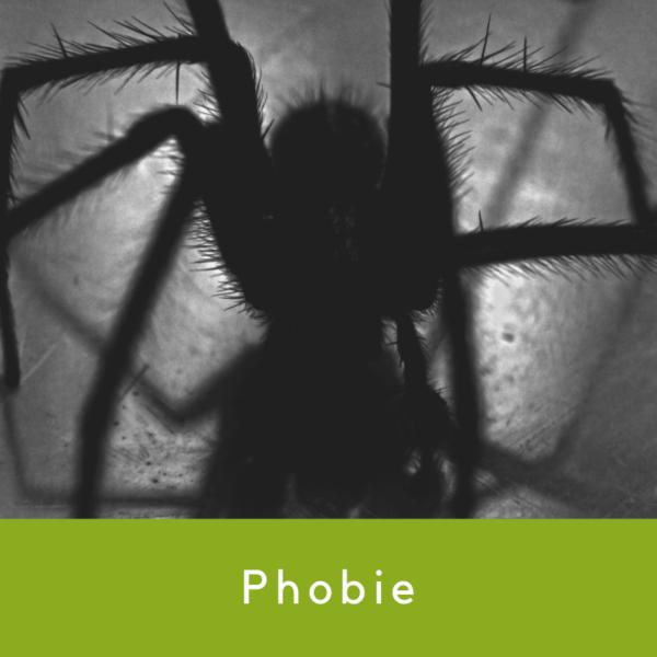 AIM Phobie